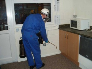 Pest Control 06